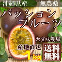 パッションフルーツ A品 約1kg(沖縄県 大宜味農場)自然農法無農薬果物・送料無料・産地直送