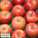 ふじ 家庭用 5kg箱(青森県 田村りんご農園) 特別栽培 減農薬 りんご 送料無料 産地直送