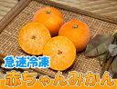 急速冷凍赤ちゃんみかん 6kg(佐賀県 佐藤農場株式会社)無農薬柑橘・送料クール冷凍便無料・産地直送