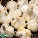 にんにく(福地ホワイト六片種)B品1kg(青森県 あおもり南部有機生産組合)有機JAS栽培・送料無料・産地直送