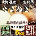 [セール] 玉ねぎ サイズ混合5kg(北海道自然農法の会)自然農法たまねぎ・無農薬野菜・送料無料