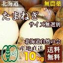 玉ねぎ(セール) サイズ混合10kg(北海道自然農法の会)自然農法たまねぎ・無農薬野菜・送料無料