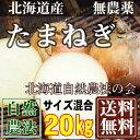 [セール] 無農薬 玉ねぎ M〜2Lサイズ混合 20kg(北海道 自然農法の会)有機JASたまねぎ・無農薬野菜・産地直送・送料無料