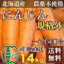 [セール] 有機JAS にんじん 規格外 14kg(北海道 一心生産組合)農薬不使用 訳あり 送料無料 産地直送 オーガニック