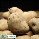 [セール] 北あかり(M〜Lサイズ) 10kg(北海道自然の会)有機JAS・自然農法・無農薬じゃ