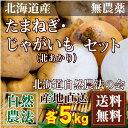 [セール] 北あかり(Sサイズ)・玉ねぎ(サイズ混合)セット 10kg(各5kg)(北海道自然農法の会)自然農法・無農薬いも・送料無料