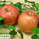 【訳あり】昴林 5kg 特別栽培 (青森県 阿部農園) 産地直送