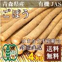 ごぼう 2kg×2箱(青森県 はまなす生産組合)有機JAS無農薬野菜・送料無料・産地直送