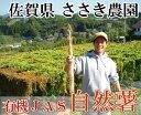 【クール便】自然薯 家庭用約1kg(1〜2本)(佐賀県 ささき農園)有機JAS無農薬野菜・送料無料・産地直送・オーガニック・訳あり・お徳用