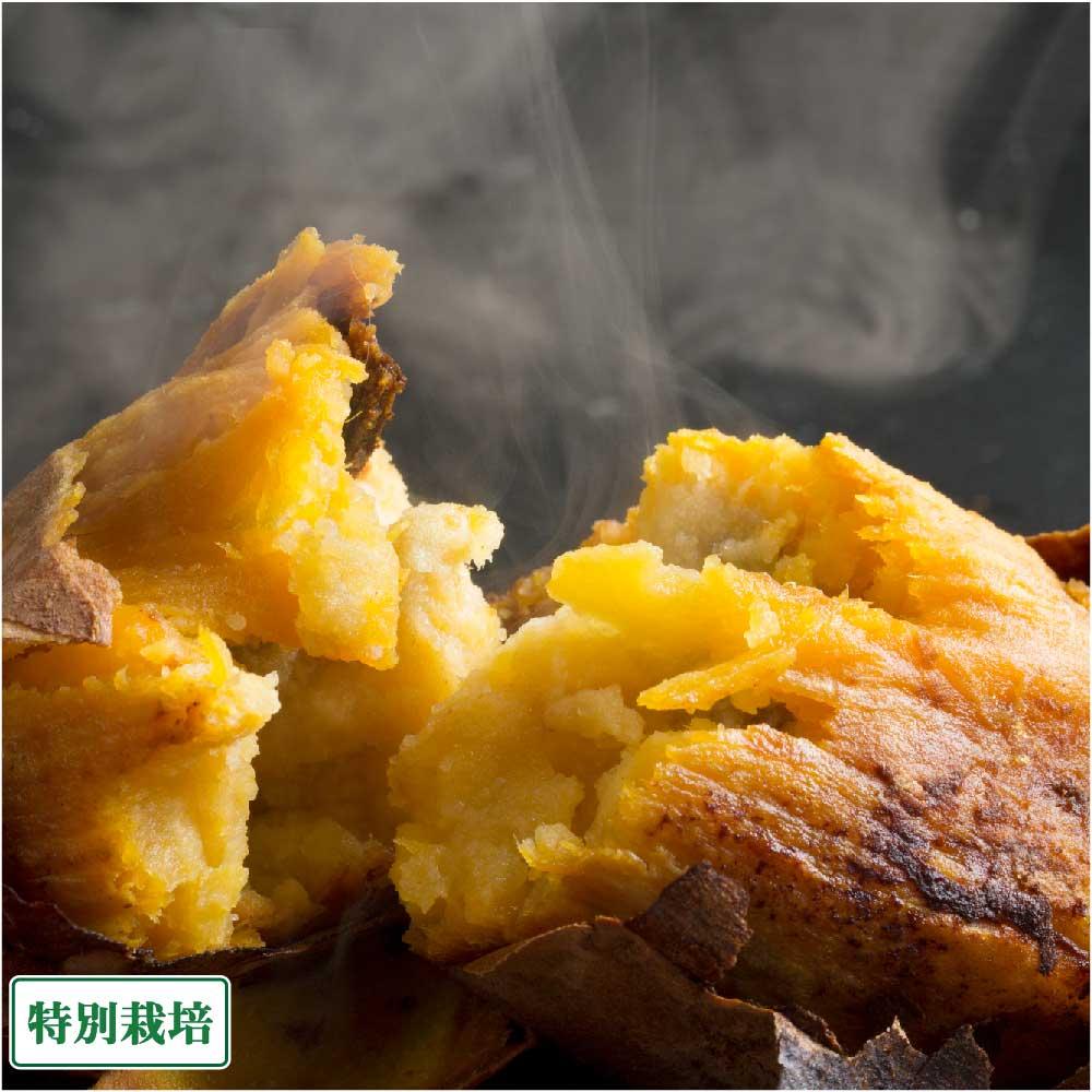 【セール】[クール冷凍] 焼き芋(安納芋) 約8...の商品画像