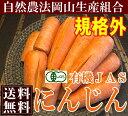 有機JASにんじん 規格外10kg箱(岡山県 岡山生産組合)有機JAS・送料無料・お徳用・ジュース用