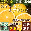 スイートスプリング A・B品混合 2.5kg (佐賀県 佐藤農場株式会社) 無農薬 柑橘 送料無料 産地直送
