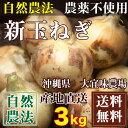 自然農法 新玉ねぎ 約3kg(沖縄県 大宜味農場) 農薬・化学肥料完全不使用たまねぎ 送料無料 産地直送