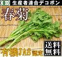 [クール便無料]有機JAS 春菊 100g×5袋(千葉県 生産者連合デコポン)無農薬野菜・送料無料・産地直送 P20Aug16