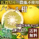 パール柑 A・Bサイズ混合 2kg (佐賀県 佐藤農場株式会社) 化学合成された農薬、肥料不使用 送料無料 産地直送