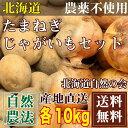 北あかり・玉ねぎセット サイズ混合 20kg(各10kg)(北海道自然の会) 自然農法 農薬不使用 送料無料