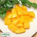 冷凍マンゴー 1kg(200g×5袋)(沖縄県 沖縄マンゴー生産研究会) 自然農法 マンゴー 送料