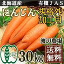 「ポイント10倍」 有機JAS にんじん 規格外加工用 15kg×2箱(北海道 渡辺農場)無農薬野菜・送料無料・産地直送
