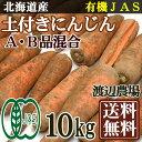 有機JAS 土付きにんじん A・B品混合 10kg(北海道 渡辺農場)無農薬野菜・送料無料・産