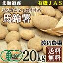 【在庫処分セール】ふるさと21おすすめ馬鈴薯(じゃがいも) サイズ無選別 20kg 有機JAS