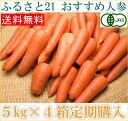 【定期購入】【B品】無農薬にんじん 5kg箱×4箱定期配送 人参 (1週間に1箱)(ふるさと21
