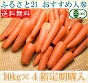 【定期購入】【B品】無農薬にんじん 10kg箱×4箱定期配送 人参 (1週間に1箱)(ふるさと2