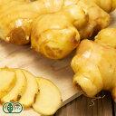 限界突破ショウガ 2kg 有機JAS (高知県 ラッキー農園) 生姜 しょうが 産地直送