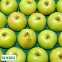 【訳あり】 無・無 王林 12kg箱 特別栽培 (青森県 北