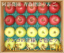 サンふじ・王林2色セット A品5kg箱(14〜23玉)(青森県 阿部農園) 特別栽培 減農薬 りんご 送料無料 直送