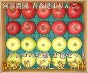 サンふじ・王林2色セット 訳あり10kg箱(28〜46玉)(青森県 阿部農園)特別栽培減農薬りんご・送料無料・産地直送・お徳用