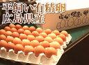 平飼い有精卵 160個(広島県 はやしなちゅらるふぁーむ)送料無料・産地直送・健康た