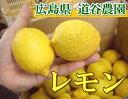 【A・B品混合】 レモン 5kg 自然農法 (広島県 道谷農園) 産地直送