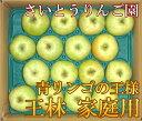 王林 家庭用10kg箱(28玉〜46玉)(青森県 さいとうりんご園)特別栽培減農薬りんご・送料無料・産地直送・お徳用