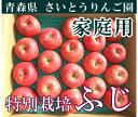 ふじ 家庭用10kg箱(28〜46玉)(青森県 さいとうりんご園)特別栽培減農薬りんご・送料無料・産地直送・お徳用