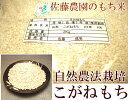 [28年度産] もち米(こがねもち) 2kg(山形県 佐藤農園)自然農法無農薬餅米・送料無料・産地直送・ギフト・贈答
