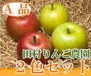 青森健康りんご2色セット A品10kg箱(青森県 田村りんご農園) 特別栽培 減農薬 りんご 送料無料 産地直送