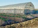 定植時の苗や作物の倒伏を風から守る防風ネットセット1.0×10m 10P26Mar16