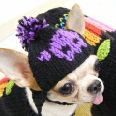 チワワドクロニット帽│チワワ小型犬犬ペット帽子キャップ犬用おしゃれ子犬パピーかぶりものコスプレニット