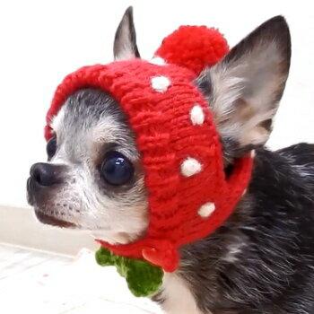 イチゴチワワのニット帽│チワワ小型犬犬ペット帽子キャップ犬用おしゃれ子犬パピーかぶりものコスプレニッ