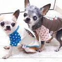 【チワワ 服】SkipDog!ドットラグランTシャツ (チワワ 小型犬 犬の服 ドッグウェア 犬服 半袖)