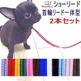 【チワワ 首輪 リード】SkipDog! プチインリード (子犬 小型犬 犬用 首輪 カラー 散歩 ペット 犬 室内犬) メール便可