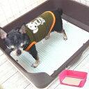 【チワワ トイレ】ステップメッシュ 壁付き トイレトレー (チワワ 小型犬 いたずら防止トイレ ペット用品 トイレ用品)