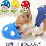 【犬 おもちゃ 知育】知育トイ きのこスリッパ 【小型犬 チワワ 犬 おもちゃ ぬいぐるみ 音】