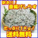 業務用!愛媛県産 ふんわり柔らかい 釜揚 しらす!1kg(5...