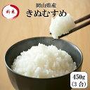 新米 令和元年産 ポイント消化 送料無料 お試し お米 食品 安い 1kg以下 岡山県産きぬむすめ 450g(3合)1袋 メール便