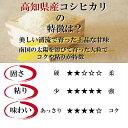 高知県産みょうがたっぷり!約2kg入り今なら甘酢1袋も付いています!