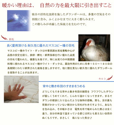 京都イワタ羽毛敷きパッド(ダウンパッド)セミダブルサイズ岩田【smtb-tk】値下げしました