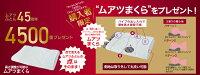 【ムアツ枕MP5000(定価5400円)プレゼント中!】