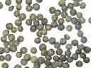 ●認証済 フレンチブルーレンズ豆 500g×12 商品取り寄せのため、在庫確認後ご連絡いたします。長期欠品の際はキャンセルさせていただく場合がございます。