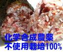 送料無料 十六穀米 280g×7 化学合成農薬不使用(有機JAS認定品+海外オーガニック認定機関認定品)100%